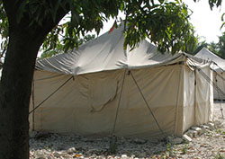 Noah was in his tent