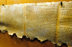 Early Bible Scrolls
